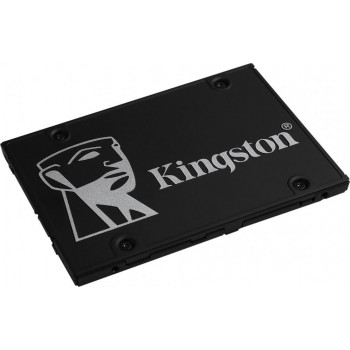 Жесткий диск SSD Kingston 256 Gb 550/500 Mb/s SATA 2.5 (SKC600B/256G)